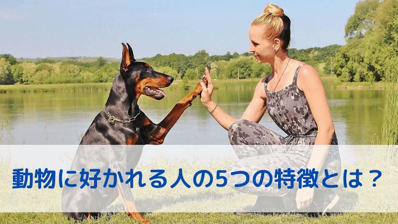 動物に好かれる人の特徴5つ