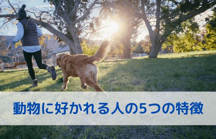 動物に好かれる人の5つの特徴